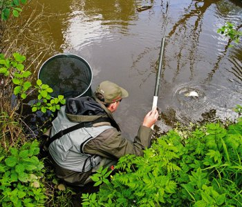 Как поймать карася в различные сезоны года?
