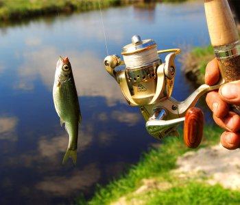 Когда рыбалка на спиннинг будет успешной?
