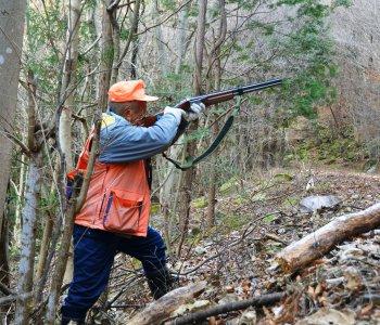 Правила охоты с нарезным оружием