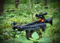 Арбалет для охоты и особенности покупки